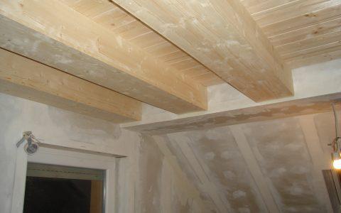 Innenausbau mit Rigips und Holz